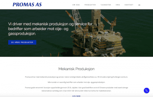 Promas AS project
